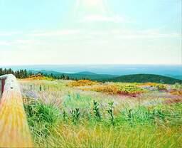 Frühsommerheidenweite ; Öl auf Baumwolle, 2010, 130 x 160 cm; Blick vom Brocken Anfang Juni Richtung Südosten über die Hohneklippen, die Heinrichshöhe und den Ostharz bis zum