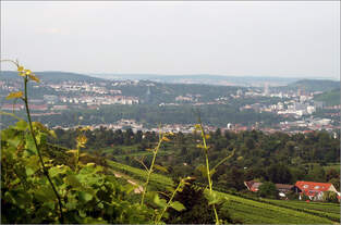 Stadtlandschaft mit etwas Bahnbezug -     Hier blickt man von Kappelberg oberhalb Fellbachs auf den Stuttgarter Norden.