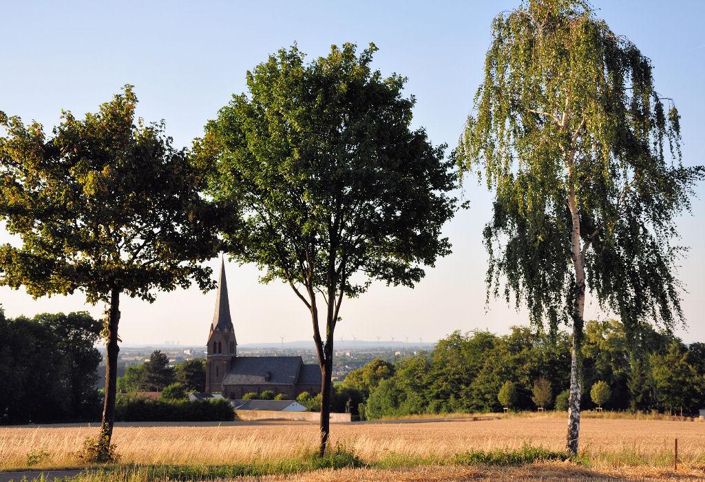3 laubb ume am wegesrand mit durchblick auf die kirche von euskirchen billig. Black Bedroom Furniture Sets. Home Design Ideas