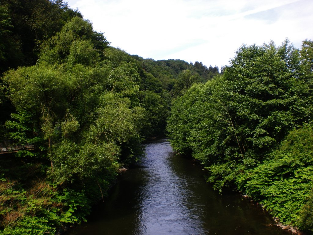 Die Wupper in Solingen-Burg.(4.7.2012)