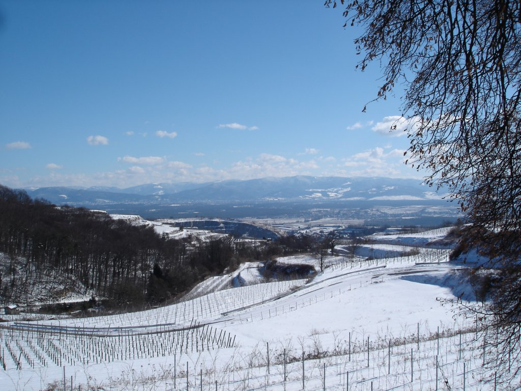kaiserstuhl winter 2005 blick vom vogelsangpass zum. Black Bedroom Furniture Sets. Home Design Ideas