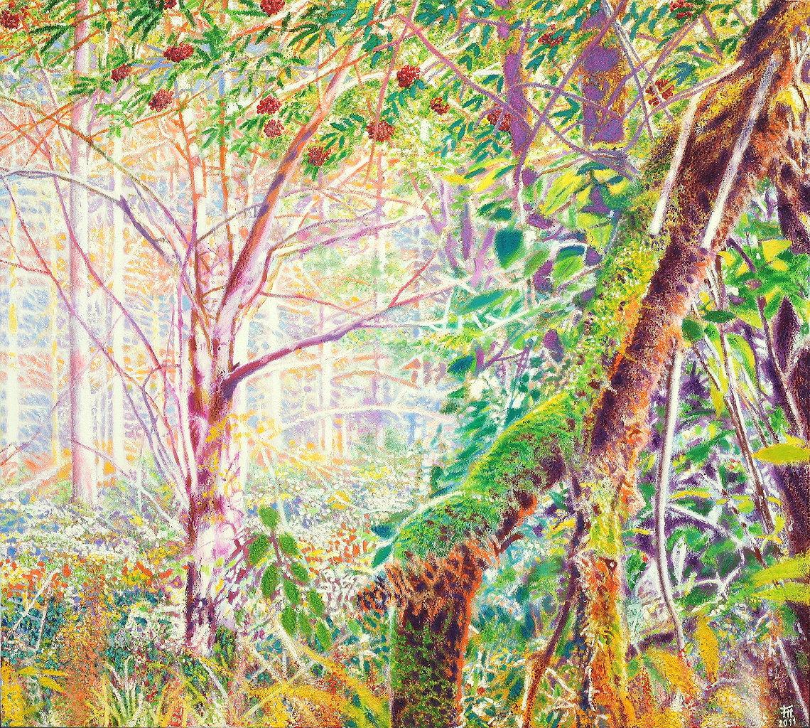 ebereschenurwald l auf baumwolle 2011 90 x 100 cm blick in urwald im nationalpark mit eb. Black Bedroom Furniture Sets. Home Design Ideas
