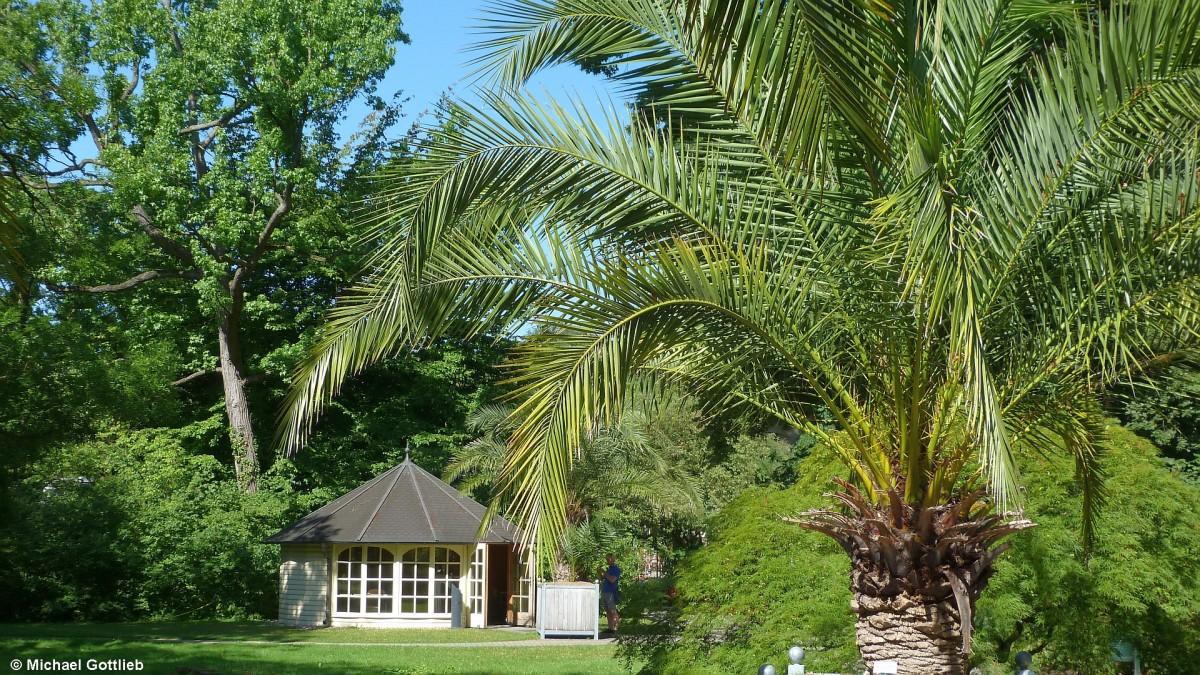 pavillion im botanischen garten der universit t m nster. Black Bedroom Furniture Sets. Home Design Ideas
