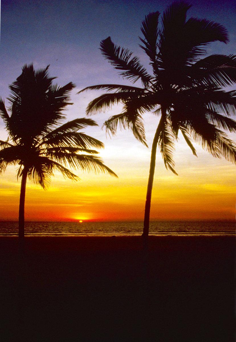 Goa Bild