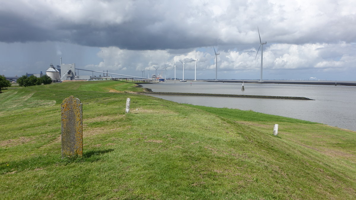 Windpark am Groote Gat Damm bei Farmsum (28.07.2017)