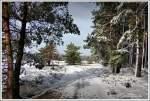 Zwischen Forst & Heide, nähe Schafstall am Wanderweg von Heimbuch nach Undeloh, im Februar 2013, im Winter am Besten von Undeloh zu erreichen, alles Andere wäre sehr mühsam.